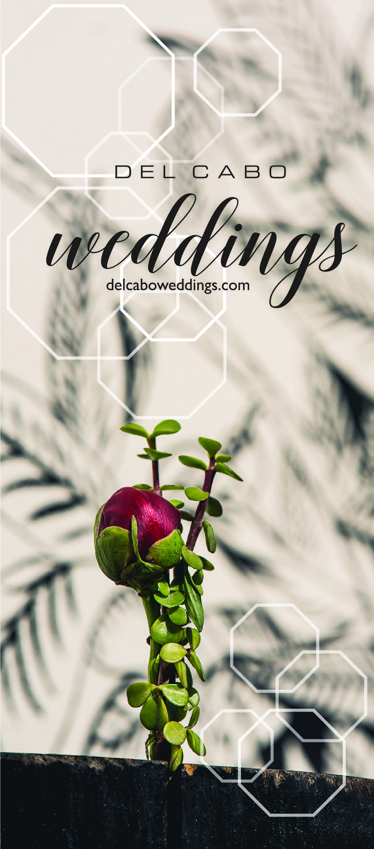 Modern flowers ideas for your beautiful wedding in Cabo! Make your destination wedding theme unforgettable! Click on this image and visit our website!