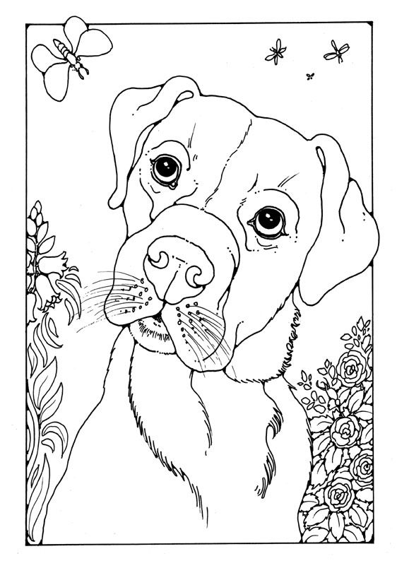 78 best images about 고양이 on Pinterest Tutorials, Step by step - best of coloring pages for adults dogs