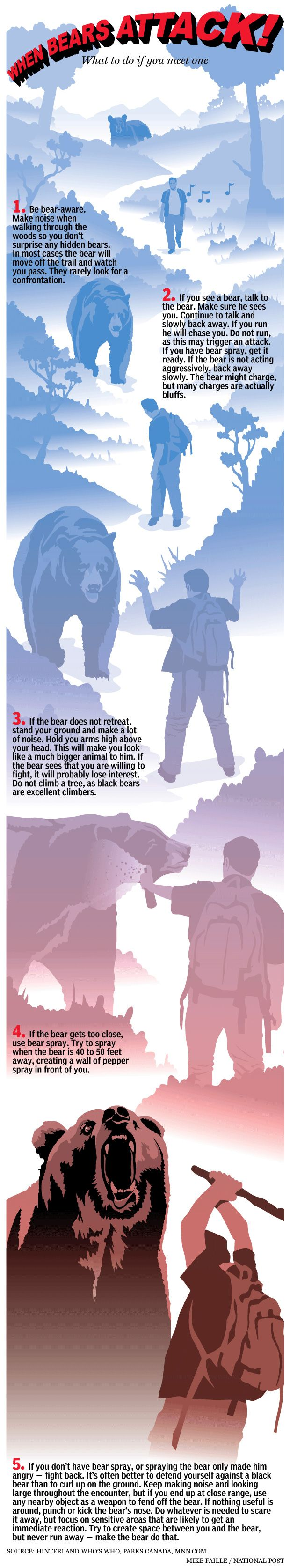 When Bears Attack!  What To Do If You Meet One
