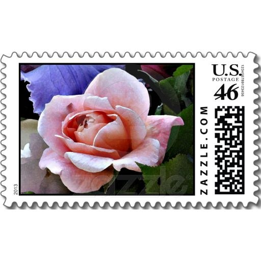 Delicate Rose Floral Photography Postage stamps #roses #pink #flowers #photography #art #nature #zazzle #postage #stamps #petspower