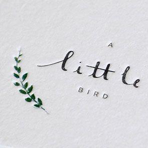 little bird - branding - mrcup