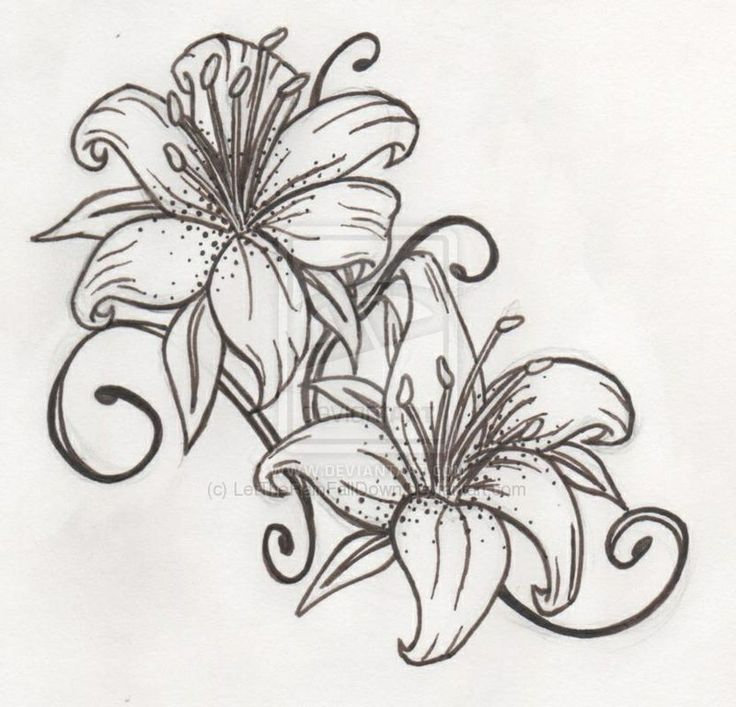 Lilies tattoo                                                                                                                                                      More