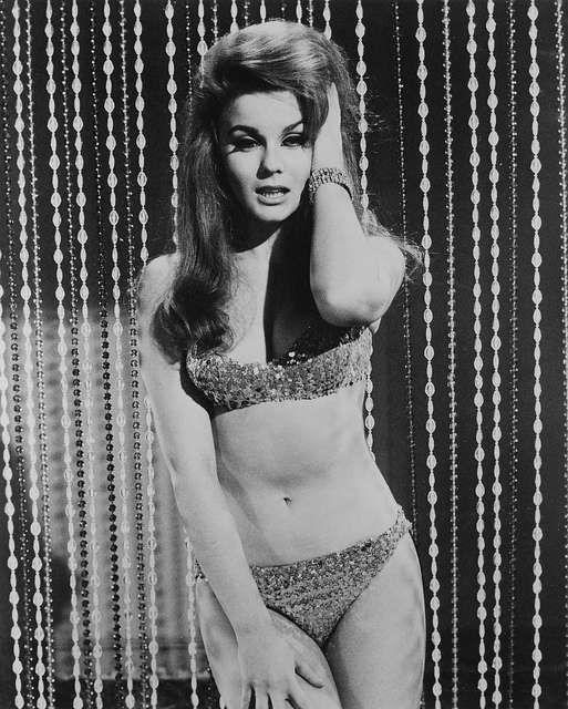vintage-bikini-galleries-amateur-free-picture-post-sex