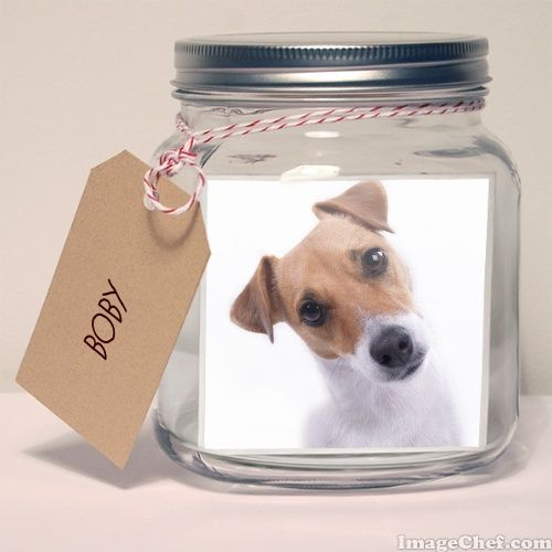 ImageChef - Photo in a Jar