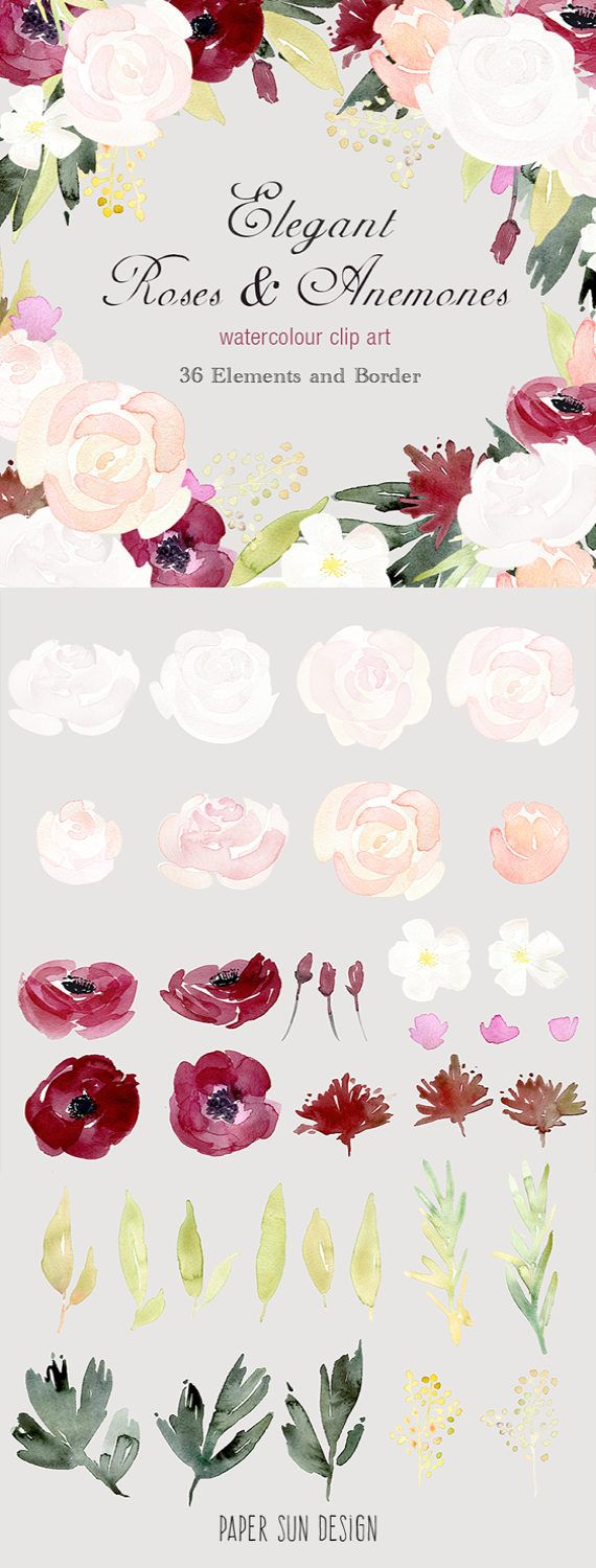 Watercolour Floral Border and Elements Elegant by
