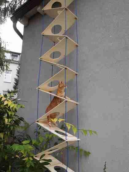 escada externa para gato
