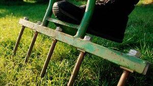 So bringen Sie Ihren Rasen wieder in Form. (Quelle: imago/Redeleit)