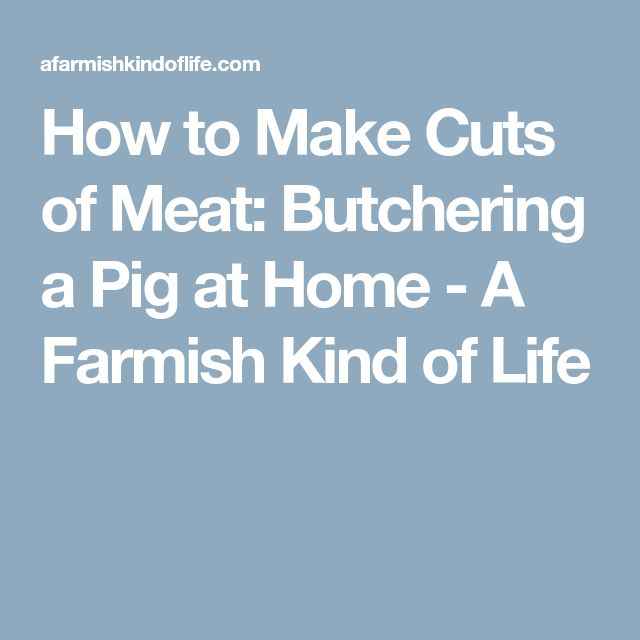 How to Make Cuts of Meat: Butchering a Pig at Home - A Farmish Kind of Life
