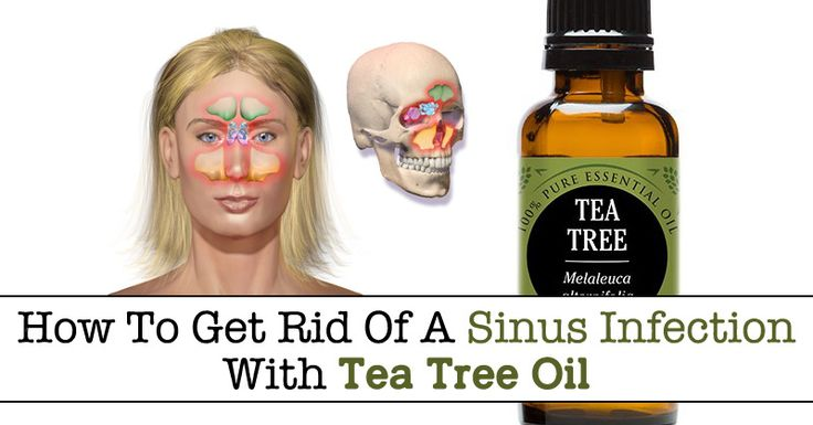 how to get rid of a sinus infection with tea tree oil. Black Bedroom Furniture Sets. Home Design Ideas
