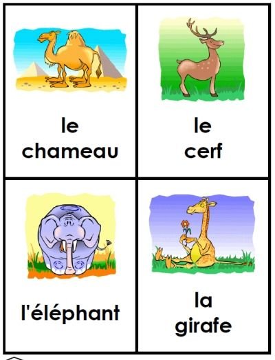 free french animal flashcards printable from FransFreebies.com