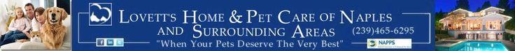 Overnight pet sitter naples, in home pet sitter naples, dog walker naples -- pet sitter naples fl -- http://lovettspetcare.com/