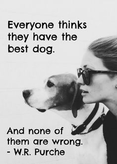 #quote about the best #dog | http://www.fordogtrainers.com