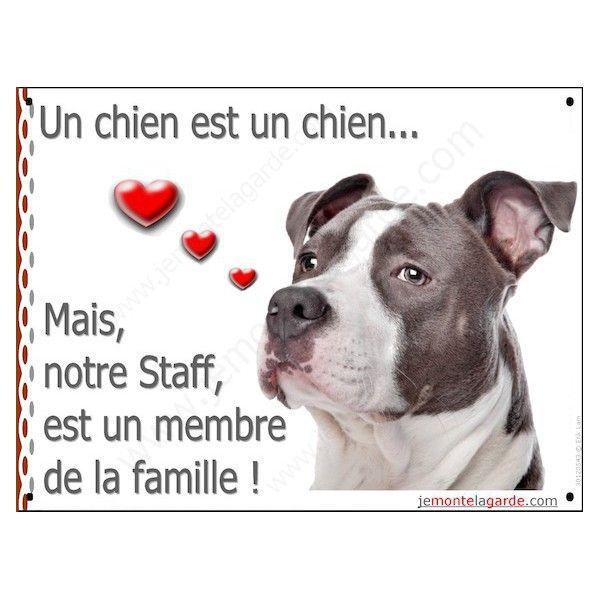 Pancarte portail, Un chien est un chien, mais notre Am Staff bleu gris est un membre de la famille ! Tailles disponibles :   16 x 12 cm  9,99€ panneau plaque coeurs american