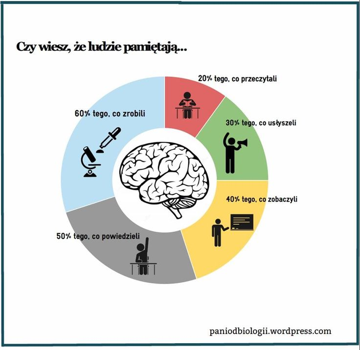 #nauka #pamięć https://paniodbiologii.wordpress.com/