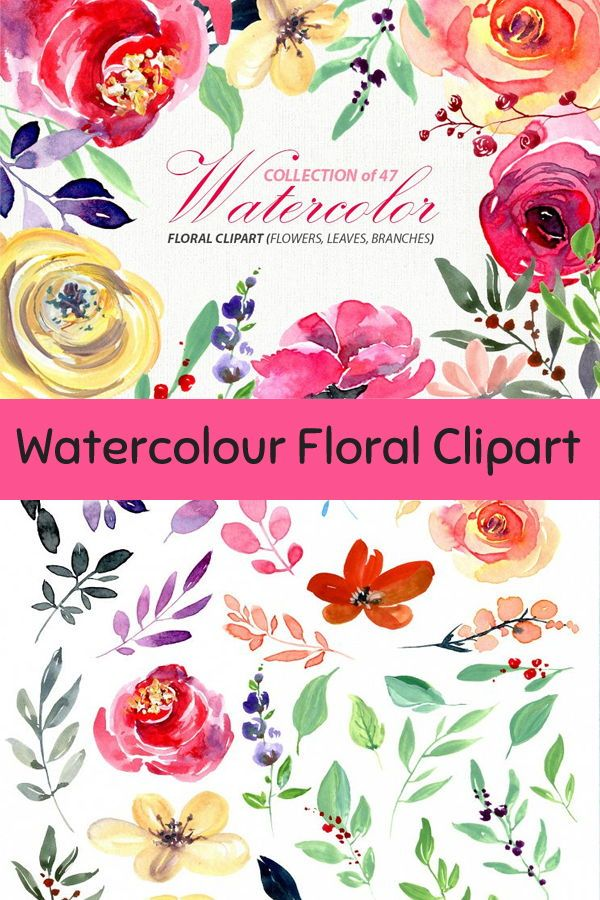 Bright Watercolour Flowers Png Watercolor Flowers Floral