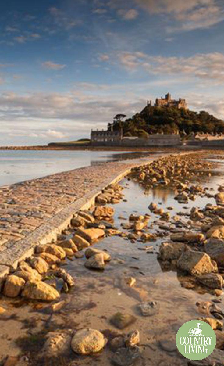 8f3e0335f0070d37e193cb1afe6ed58b - The Coastal Gardener Isle Of Wight