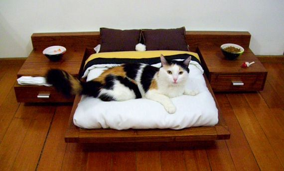 Custom Luxury Furniture For Your Pets via @Incredible Things