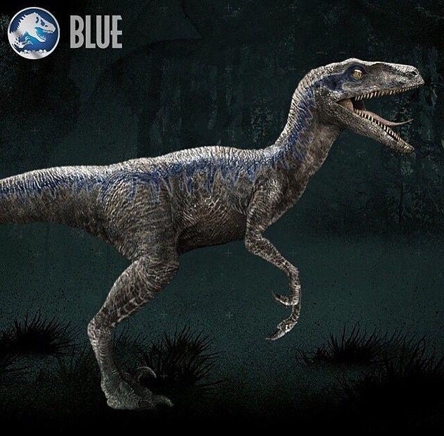 velociraptor jurassic world blue google search