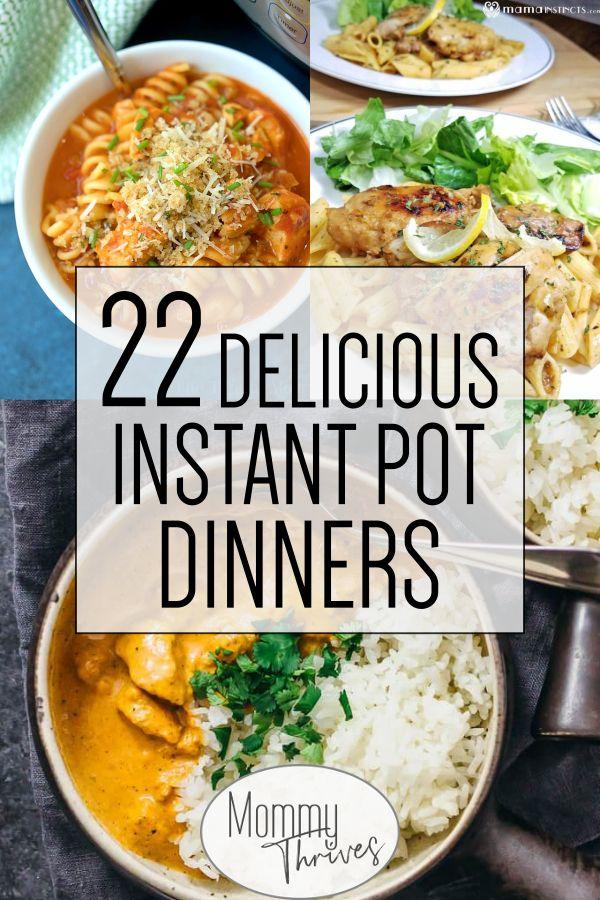 Ricette Easy Instant Pot per principianti: pollo, manzo, maiale e zuppa Instant P …