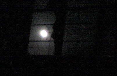Es la noche, oscura como el antifaz de los asesinos. Muy cerca se oye un grito de terror, luego, un disparo que lo silencia. Ninguna de...