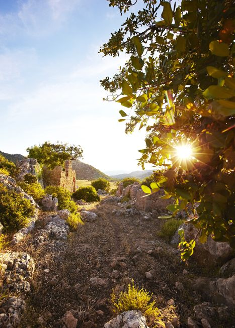 A stretch of the Lycian Way between Kale and Kas, Turkey