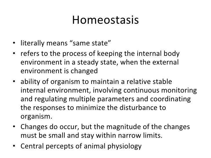 Homeostasis Examples Google Search Bio Chem Physio