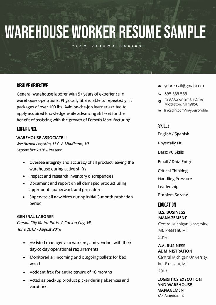 Resume title examples for any job fresh warehouse worker
