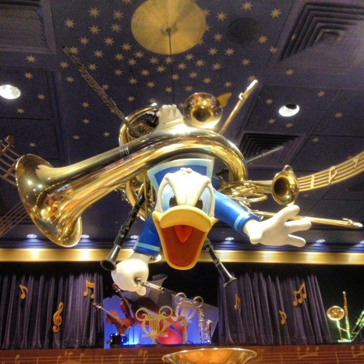 Die besten 25 Donald ducks middle name Ideen auf Pinterest