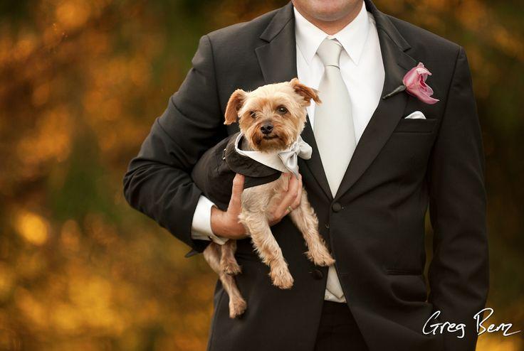 Your Guide to a Pet-Friendly Wedding #PetsOfTheWedding #Pets #EvalinesBridal