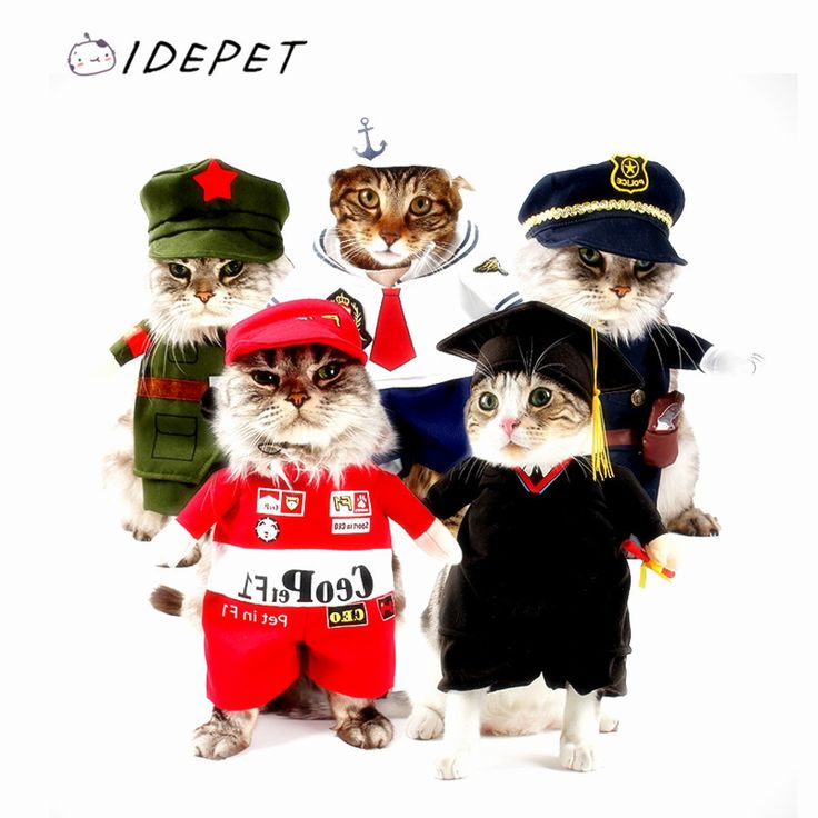 2016 Pet Costume Cat Costume Funny Cat Clothes Sexy Nurse Policeman Cowboy Sailor Uniform Hat Business Attire Faster Shipping 14