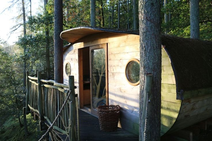 Staying in a tree house in Wales.  Near Aberporth, a beautiful seaside village, Aberystwyth and Aberaeron