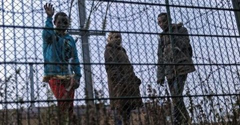 The number of migrants trying to get into the Eurotunnel terminal near Calais has fallen to about 150 a night, the operator says, down from a high of 2,000 at the end of last month...