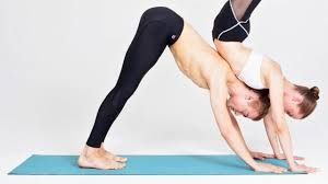 When you contract and stretch muscles, move organs around, and come in and out of yoga postures, you increase the drainage of lymph (a viscous fluid rich in immune cells). This helps the lymphatic system fight infection, destroy cancerous cells, and dispose of the toxic waste products of cellular functioning.