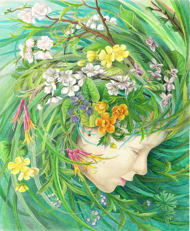 Spring / four season /color pencil /graphic art illustration