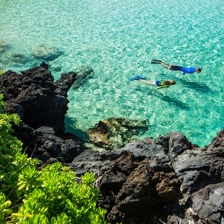 Secret Beach: Kahalu'u Beach ParkThe big payoff at this tiny, sheltered cove on the west side of the island is what's under the water: The snorkeling is out of this world. Get here before 10 a.m. for …