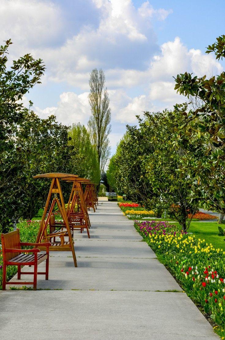 Аллея в ботаническом саду Хиршштеттен, #Вена #Австрия (Blumengärten Hirschtetten).