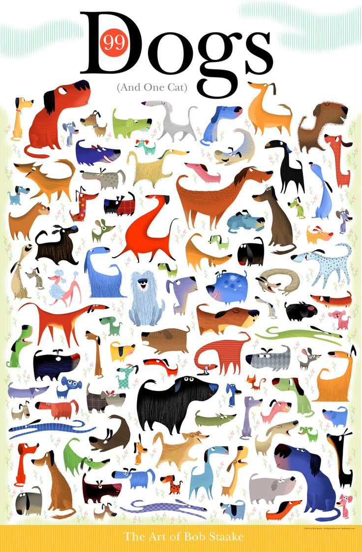 99 Dogs & One Cat by Bob Staake