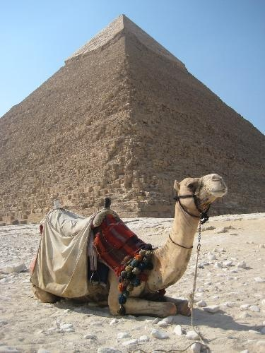 mysterious egyptian pyramids essay My trip to egypt print reference my trip to cairo, essay about holiday filled with various battles and mysterious tales that have been centred in and around.