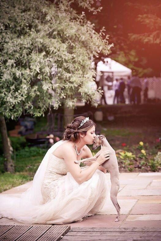 I will definitely be doing this with my own little Italian Greyhound.