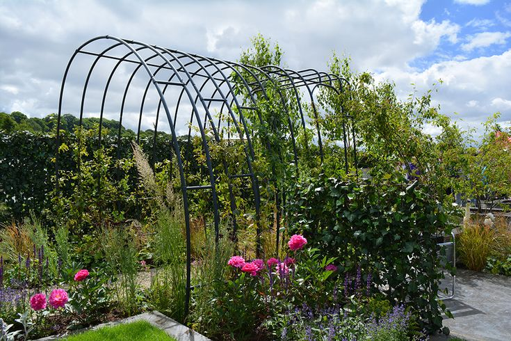Agriframes Pergola designed for RHS Chatsworth and inspired by the Bauhaus.