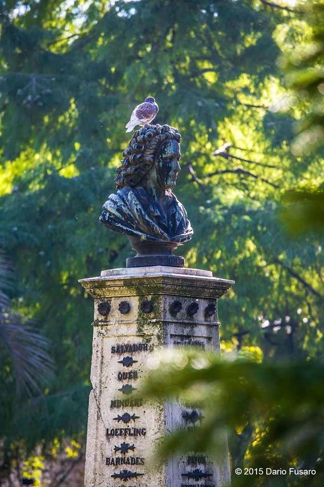 Bust of Carl von Linné (Carolus Linnaeus), The Royal Botanical Garden of Madrid (Spain)