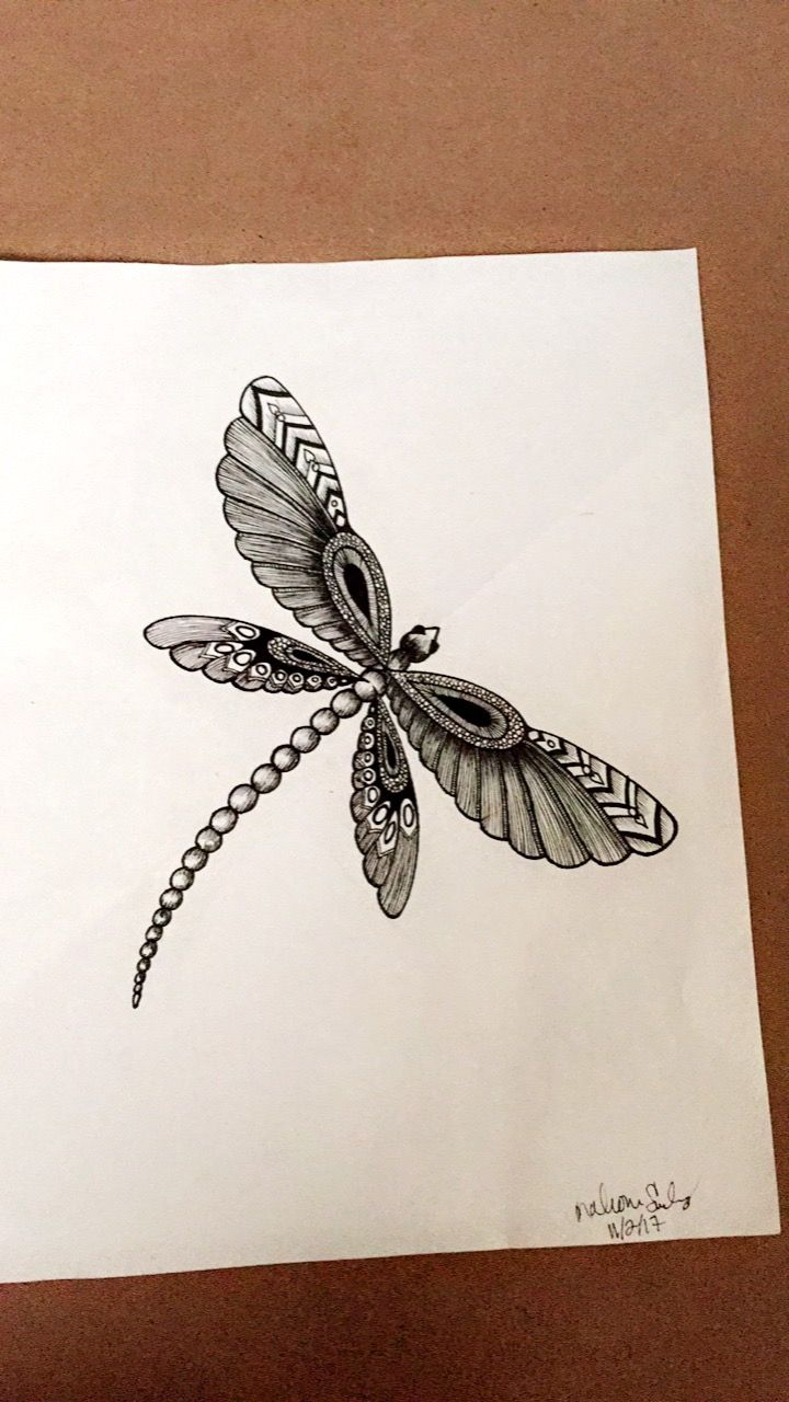 how to draw a dragon fly