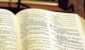 The Miscarriage Chronicles: Barren Woman Bible