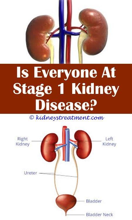 Rarity Of Chronic Kidney Disease Chronic Kidney Disease And Life