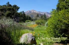 Google Image Result for http://adaynotwasted.com/wp-content/uploads/2010/06/santa-barbara-botanic-garden-entrance.jpg