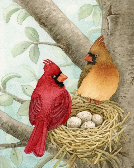 Bird Tree with Cardinals  11x14 archival by TracyLizotteStudios, $38.00