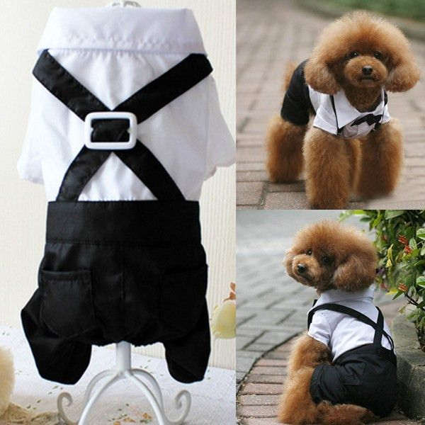 Pet Dog Tuxedo Suit Bow Tie Collared Puppy Shirt Puppy Dog Wedding Outfit