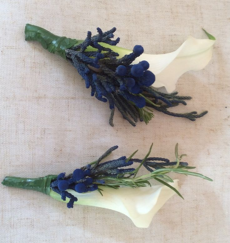 Blue and white calla lily and Brunia berries by Cathey's flowers