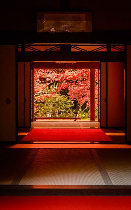 Kongorin-ji Temple, Shiga Japan by Jeffrey Friedl 金剛輪寺 #AutumnLeaves