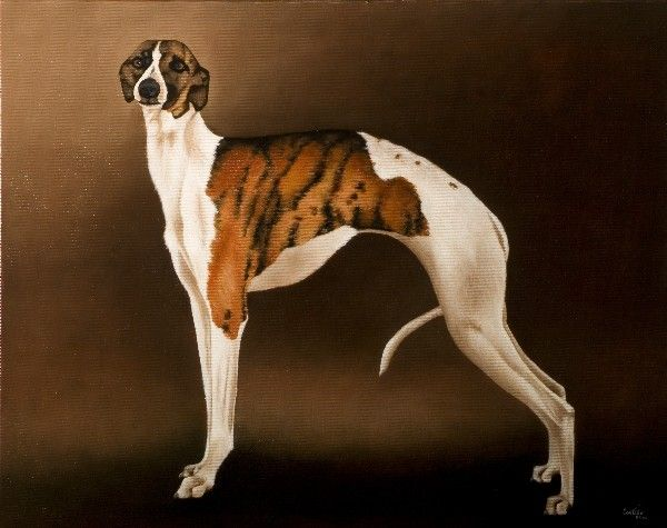 381 2010 Whippet. oil oin canvas